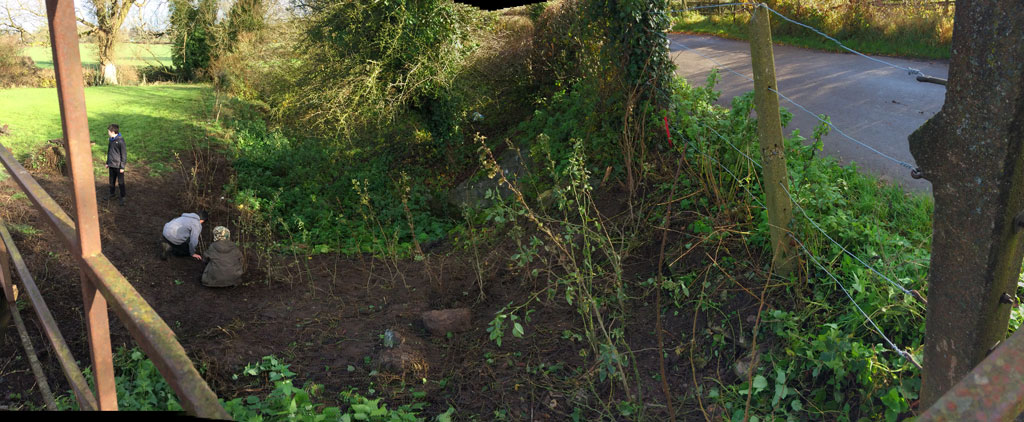 /hedge_planting